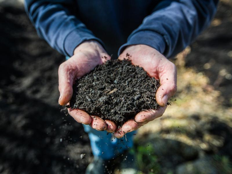 De Bree Solutions | Compost